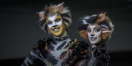 Cats verkoopt meer dan 60.000 kaarten