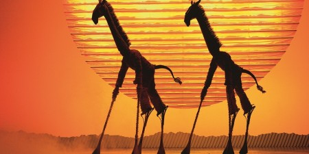 The Lion King in AFAS Circustheater gestopt