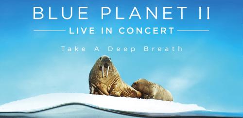 De meest spectaculaire manier om Blue Planet 2 te zien.
