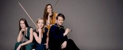 Dudok Quartet Amsterdam - Foto Marco Borggreve