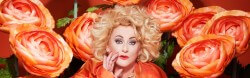 Buitencabaret: Karin Bloemen