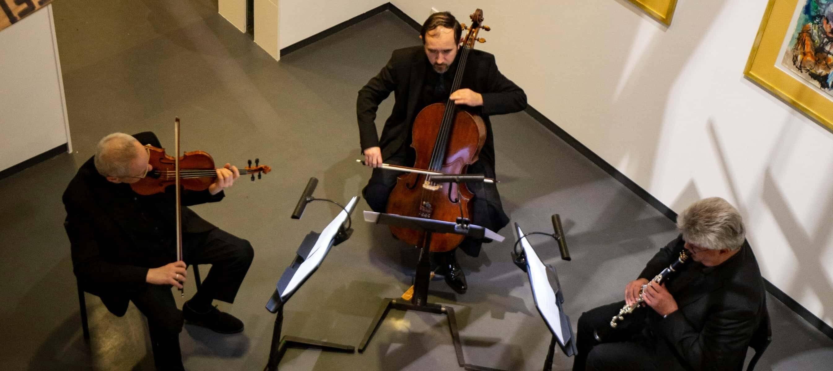 Philharmonie zuidnederland ensemble concerten