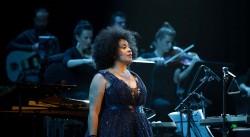 25 jaar Kross: van Curaçao tot Concertgebouw