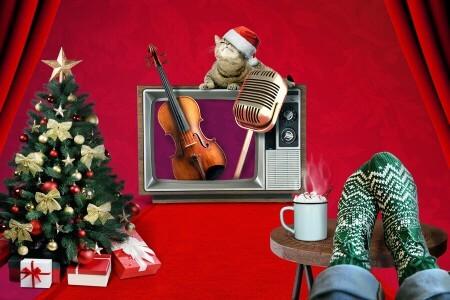 Rotterdams Philharmonisch Orkest brengt gratis kerstshow met A Musical X-mas For You